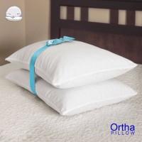 Pillow 2pc